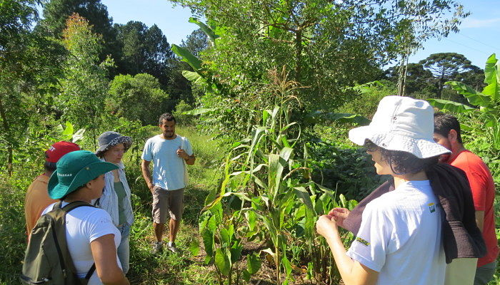 Visitas a cultivos agroecológicos